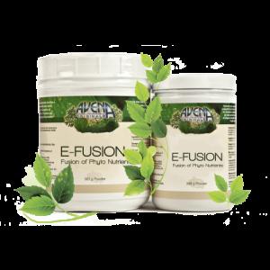 E-fusion
