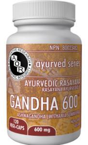 AOR04242-Gandha-600-200x330