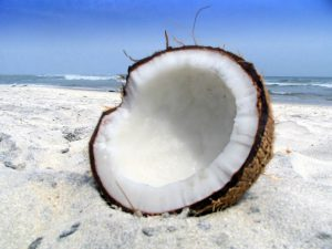 Coconut cracked up.
